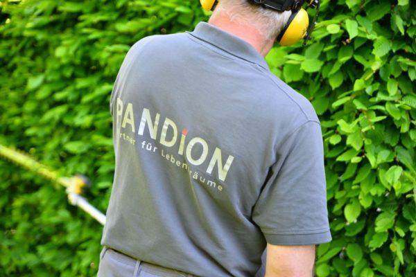 PANDION Hausmeisterservice Gartenarbeit