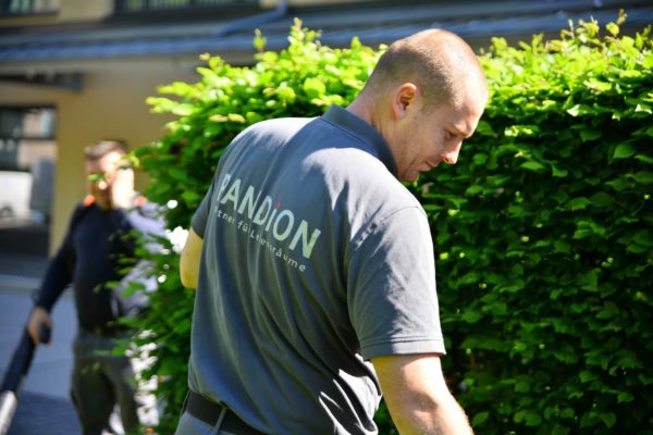 PANDION Hausmeisterservice Service